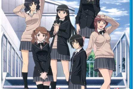 Amagami SS and Amagami SS+: The Complete...