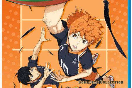 Haikyu!! 1st Season (anime review)