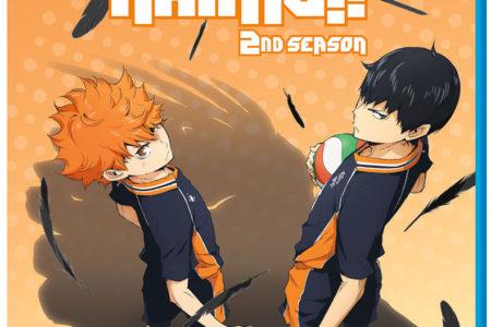 Haikyu!! 2nd Season Anime Review